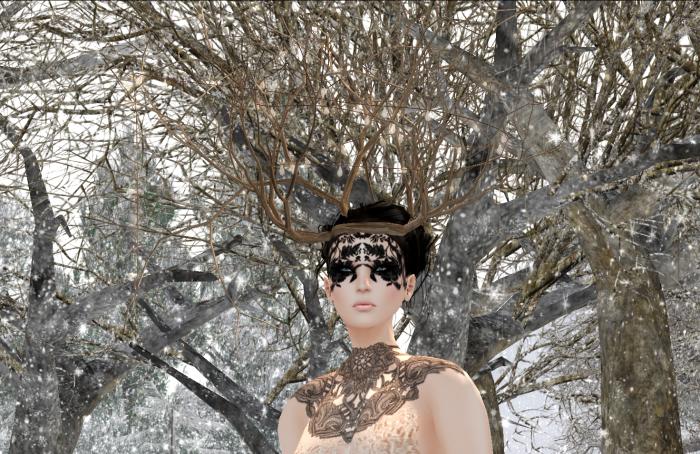 Snapshot_668