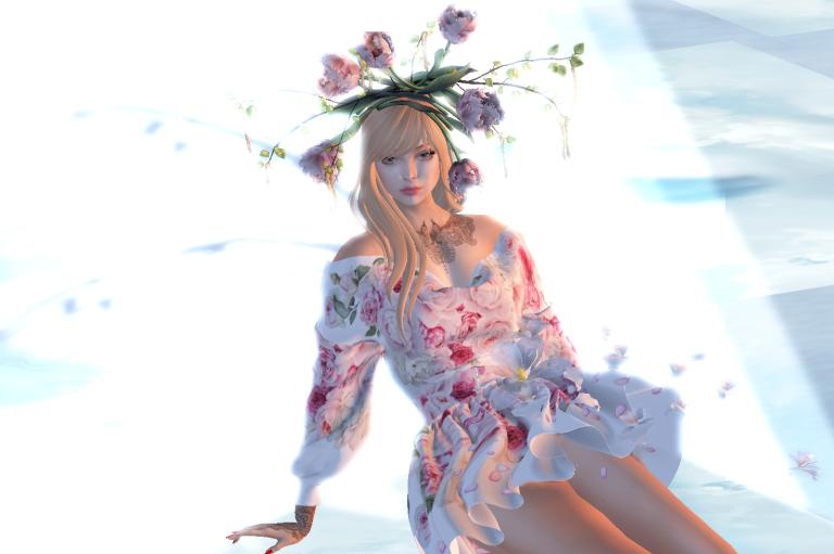 Snapshot_960